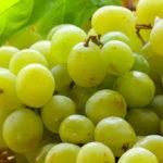 Виноград после тренировки