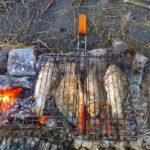Готовим речную рыбу на костре — жаренный карась пальчики оближешь
