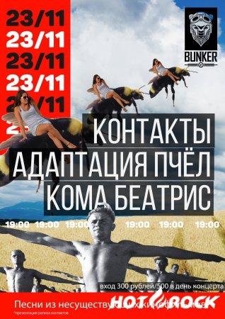 Контакты+Адаптация Пчёл (поп-панк) в Москве 23.11