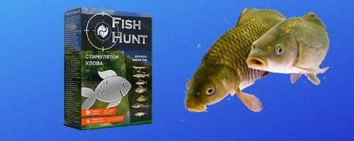 Правда о fish hunt (фиш хант). Реальный отзыв