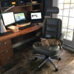 Установка автомобильного кресла на ножку офисного стула