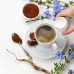 Цикорий —полезные свойства и вред. Какой напиток из цикория лучше?