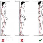 Упражнения для улучшения осанки —как исправить и выпрямить спину?