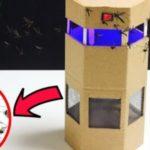 Как сделать ловушку для москитных насекомых из подручных средств