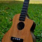 Гитара миниатюрного размера