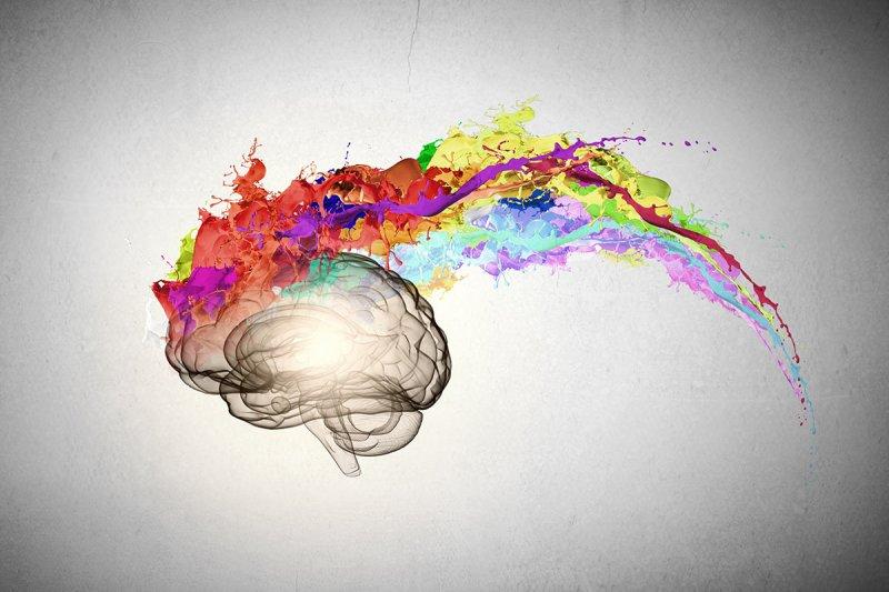 🧠 Как улучшить работу мозга —продукты и витамины для улучшения памяти
