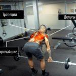 Тяга штанги в наклоне —техника, плюсы и минусы. Какие мышцы работают?