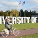 «Мне нравится учёба онлайн — колоссальная экономия времени»: история обучения в Нидерландах в условиях пандемии