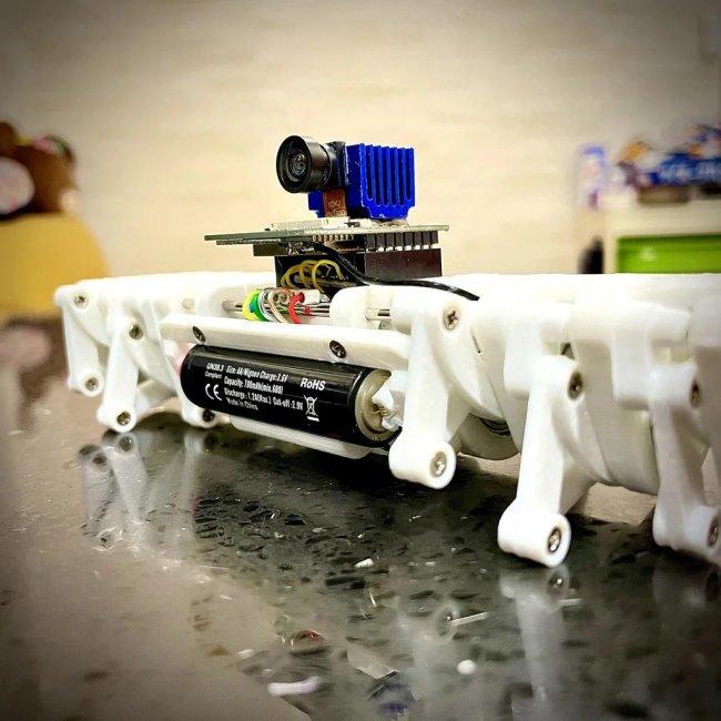 Strider — бегающий робот оснащенный камерой